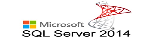 Microsoft Server Development